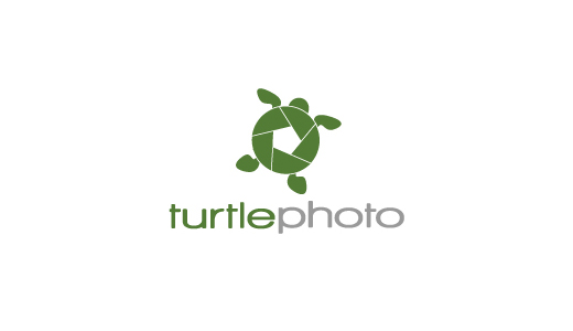 Turtle logo design - photo#14