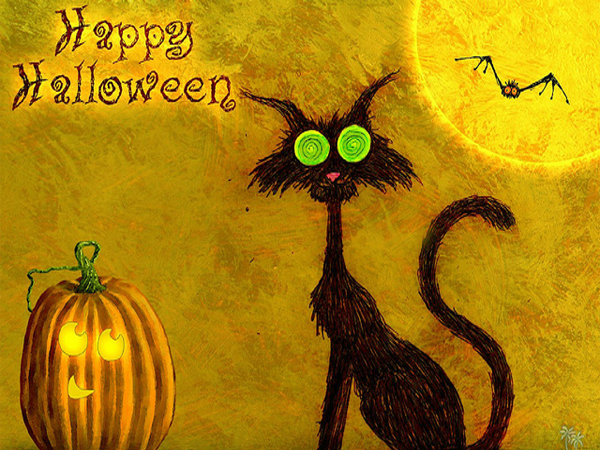 happy-halloween-trippy-cat-wallpapers