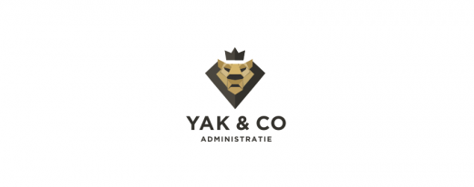 Yak & Co financial administration logo design