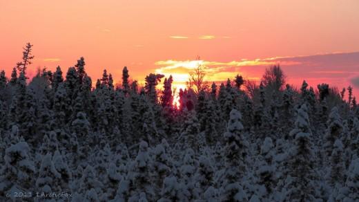 A WINTER ARCTIC SKY