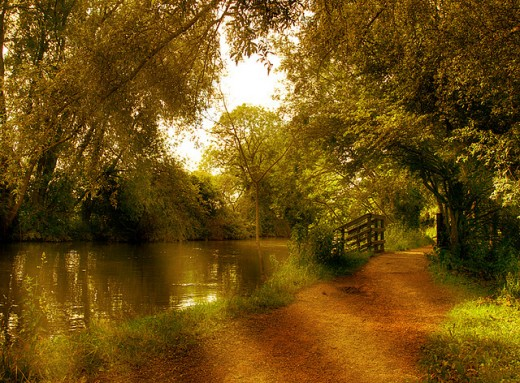 Osney path