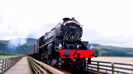 Steam Train by Little Miss Mischief
