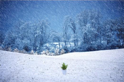 Winter time storm wallpaper
