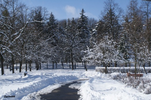 winter in march 03