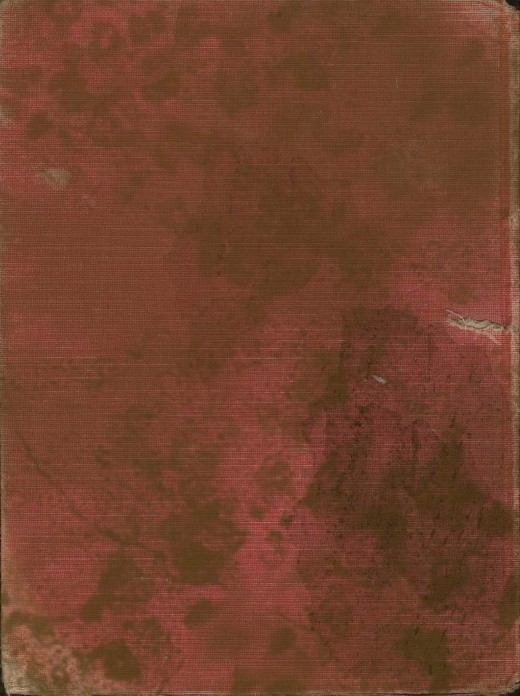 Grunge Red Cloth Book