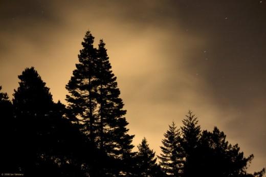Night Photography II
